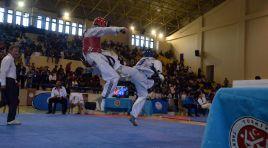 Balkan Taekwondo Şampiyonası
