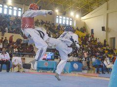 Edirne Taekwondoya doydu